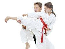 Frankfort Martial Arts Gallery